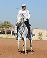 Mohamed Alabbar - Endurance Racing.JPG