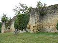 Molières - Château -5.jpg