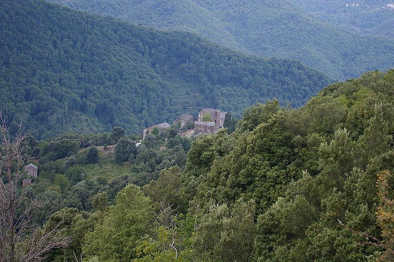 Monacia-d'Orezza