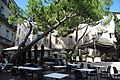 Montpellier (14722837038).jpg