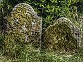 Mossy gravestones (8061784699).jpg