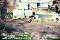 Mountcarmelfire04-19-93-c.jpg