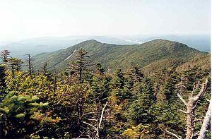 Donaldson Mountain - Donaldson Mt. (R) seen from Seward Mt.
