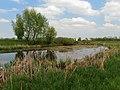 Muromets lake N Bobr1.JPG