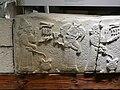 Museum of Anatolian Civilizations 1320144 nevit.jpg