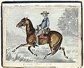 "My horse, ""Dave"".jpg"