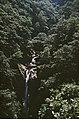 Mynach Falls, Devil's Bridge, taken 1963 - geograph.org.uk - 784744.jpg