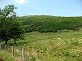 Mynydd Tryfan 1 - geograph.org.uk - 455467.jpg