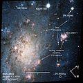 NGC 2403HSTSN.jpg