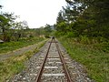 Nakano Iwaizumi, Iwaizumi-chō, Shimohei-gun, Iwate-ken 027-0501, Japan - panoramio (25).jpg