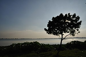 Bidhannagar - An example of the many wetlands and lakes that still surround Bidhannagar.