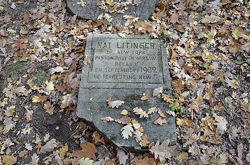 Nat Litinger Cmentarz Żydowski na Bródnie 2015