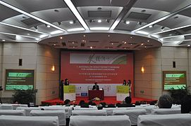 Nationaler Debattierwerb in Shanghai 2013 DSC 0038 02.jpg