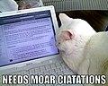 Needs moar citations.jpg
