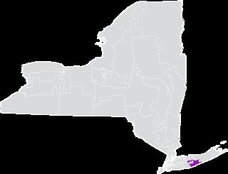 New Yorks 3rd State Senate district American legislative district