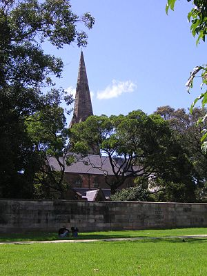 Camperdown Cemetery - View from Camperdown Memorial Rest Park