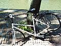 Nordholland Hoorn 2004 052k.jpg