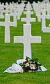 Normandy American Cemetery and Memorial (6032203087).jpg