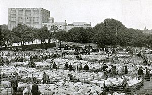 Norwich Castle - Norwich Castle and cattle market at the end of the 19th century