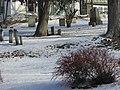 Oak Hill Cemetery in Winter image 4.jpg