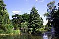 Ogród Botaniczny - widok na staw fot BMaliszewska.jpg