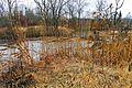 Ohio Valley Mushroom Farm, Acid-Mine Drainage (AMD) (13670939933).jpg