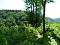 Ojcowski National Park (5).jpg