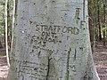 Old graffiti - geograph.org.uk - 778078.jpg
