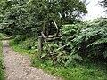 Old ladder stile - geograph.org.uk - 1564162.jpg