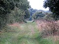 Old railway line to Oundle - August 2013 - panoramio.jpg