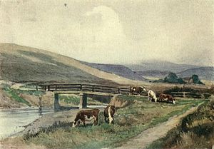 "Robert Hugh Buxton - On the Clywedog (from ""A book of the Severn"", 1920)"
