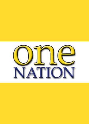 Queensland state election, 2001 - Image: One Nation placeholder 01