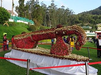 Ootyflowerfestival1.jpg
