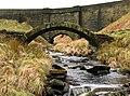 Oxygrains Bridges - geograph.org.uk - 1189988.jpg