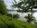 P1000290 2013-06-05 weisse-elster-hochwasser dietendorf kossweda wetterzeube.JPG