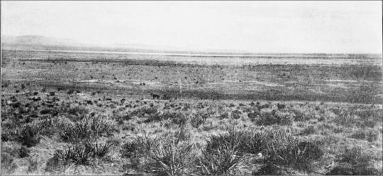 PSM V74 D026 Plain of jordana de muerto new mexico.png