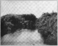 PSM V75 D301 Fish creek opening of wood creek part of the barge canal.png