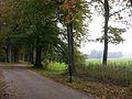Paasberglaan2007.jpg