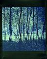 Paolo Monti - Serie fotografica - BEIC 6346557.jpg
