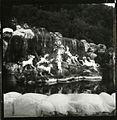 Paolo Monti - Servizio fotografico (Caserta, 1982) - BEIC 6336611.jpg