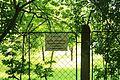 Parcul Copou (alee) (sud) (protecţie sanitară) (9).jpg
