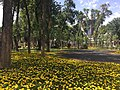 Park in Dushanbe, Tajikistan.jpg