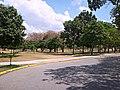 Parque del Este Barquisimeto.jpg