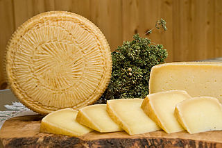 Pecorino di Filiano Italian cheese