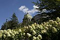 Pennsylvania State Capitol in Summer (25835514426).jpg