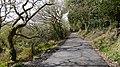 Penrose road. - panoramio.jpg