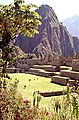 Peru-184 (2217899221).jpg