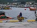 Pescadores en Quellón - panoramio.jpg