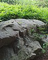 Petroglifos do Vilar - Ames - 10 - Petroglifo IV.jpg