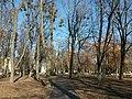 Petrovskyi Park, Poltava (2020-02-02) 02.jpg
